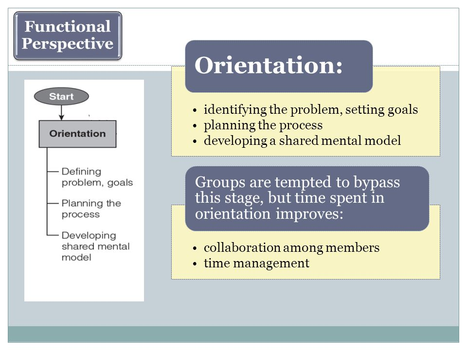 identifying the problem, setting goals planning the process developing a shared mental model Orientation: collaboration among members time management Groups are tempted to bypass this stage, but time spent in orientation improves: Functional Perspective
