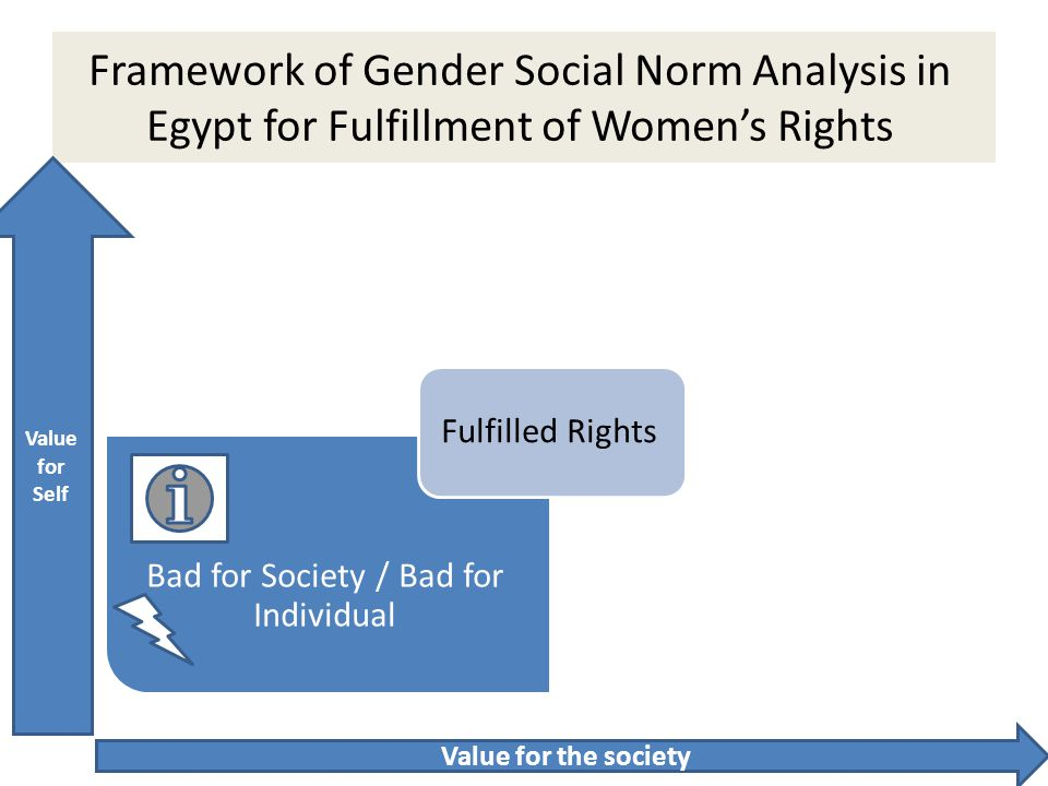 Framework of Gender Social Norm Analysis in Egypt for Fulfillment of Women's Rights Bad for the society Good for Individual Good for Individual / Good