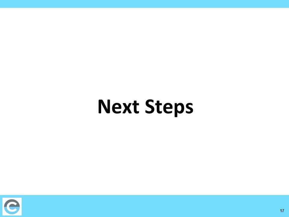 17 Next Steps
