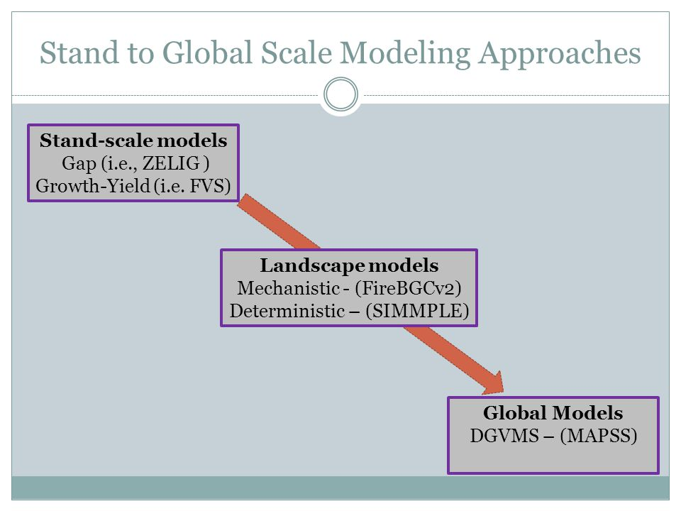 Stand to Global Scale Modeling Approaches Stand-scale models Gap (i.e., ZELIG ) Growth-Yield (i.e. FVS) Landscape models Mechanistic - (FireBGCv2) Det
