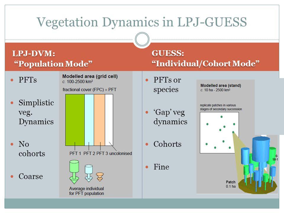 LPJ-DVM: Population Mode LPJ-DVM: Population Mode GUESS: Individual/Cohort Mode GUESS: Individual/Cohort Mode PFTs Simplistic veg.