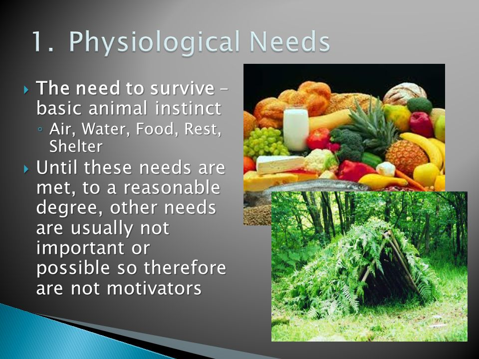  The need to survive – basic animal instinct ◦ Air, Water, Food, Rest, Shelter  Until these needs are met, to a reasonable degree, other needs are usually not important or possible so therefore are not motivators