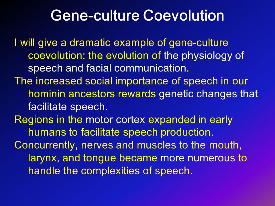 Gene-culture Coevolution I will give a dramatic example of gene-culture coevolution: the evolution of the physiology of speech and facial communicatio