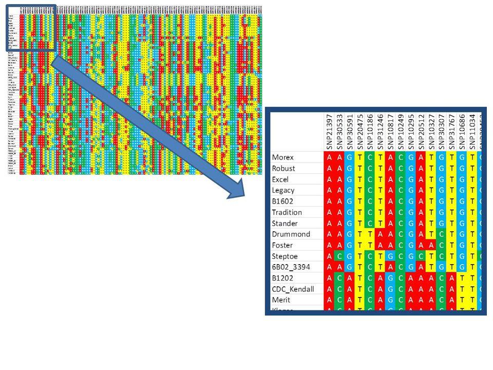 PRINCIPAL COORDINATES ANALYSIS (PCO or PCoA) Distance between Oregon towns (miles)Genetic distance between barley varieties (Nei et al., 1983 index)