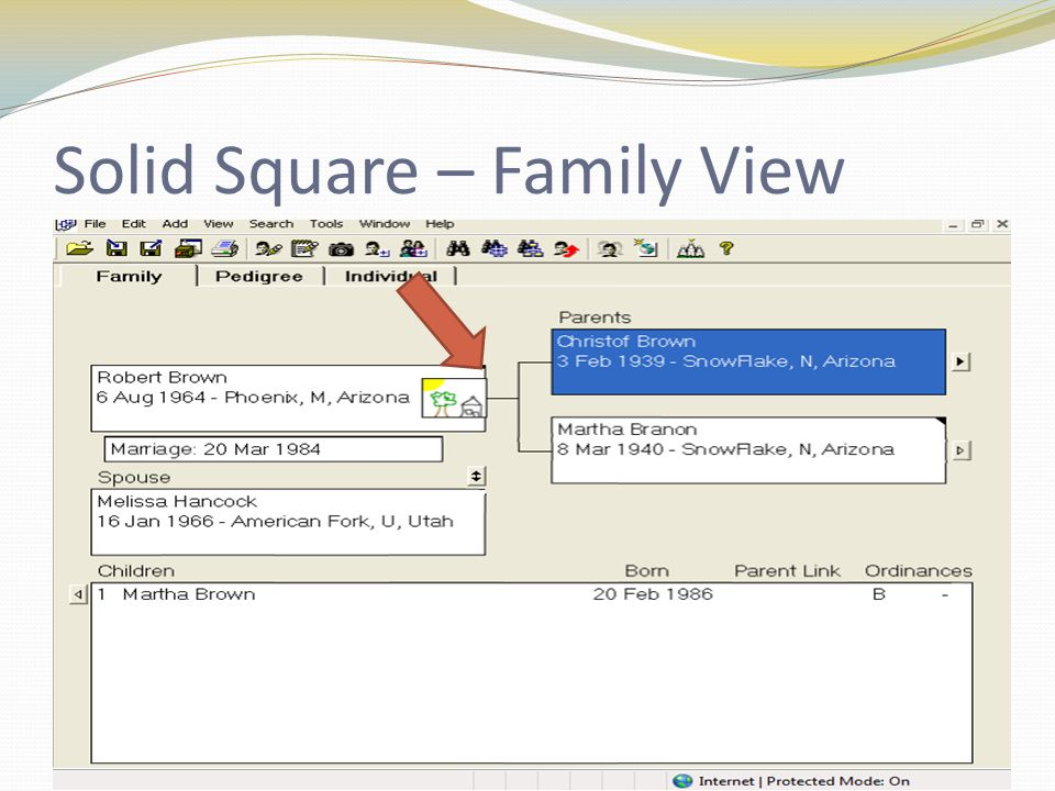 Solid Square – Family View