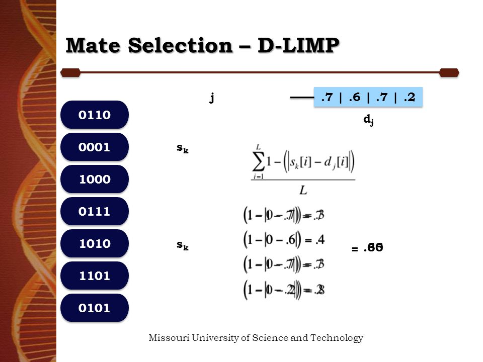 Mate Selection – D-LIMP Missouri University of Science and Technology 0110 1000 0111 0101 1101 1010 0001 sksk.7 |.6 |.7 |.2 djdj j sksk =.30.65