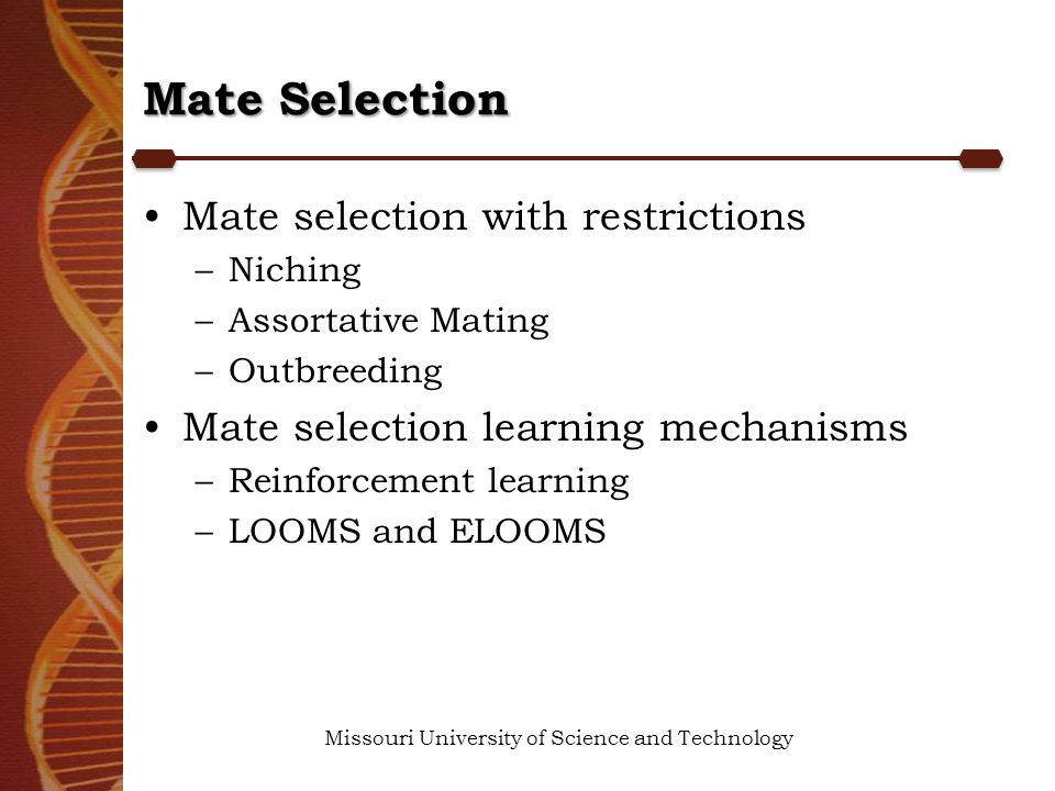 Mate Selection Missouri University of Science and Technology Mate selection with restrictions –Niching –Assortative Mating –Outbreeding Mate selection