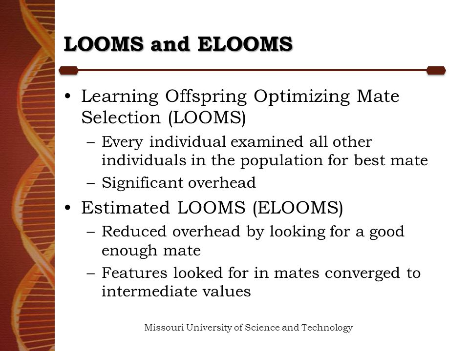 LOOMS and ELOOMS Learning Offspring Optimizing Mate Selection (LOOMS) –Every individual examined all other individuals in the population for best mate