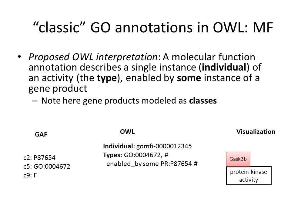 classic GO annotations in OWL: MF Proposed OWL interpretation: A molecular function annotation describes a single instance (individual) of an activity (the type), enabled by some instance of a gene product – Note here gene products modeled as classes Individual: gomfi-0000012345 Types: GO:0004672, # enabled_by some PR:P87654 # OWL GAF Visualization protein kinase activity Gask3b c2: P87654 c5: GO:0004672 c9: F