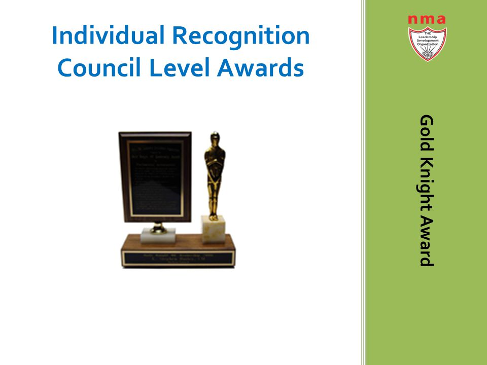 Individual Recognition Council Level Awards Gold Knight Award