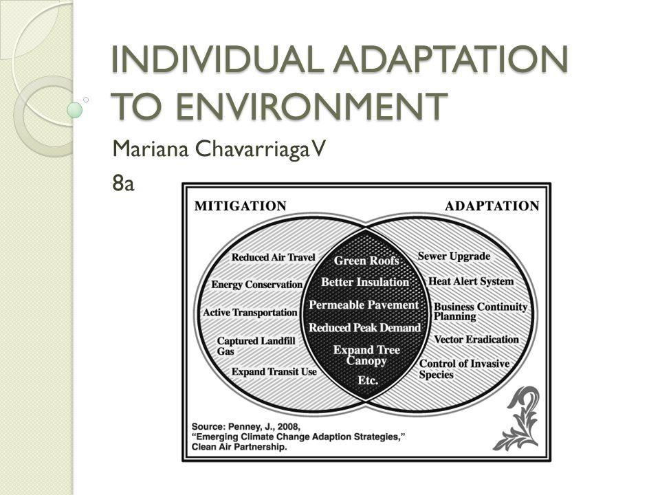 INDIVIDUAL ADAPTATION TO ENVIRONMENT Mariana Chavarriaga V 8a
