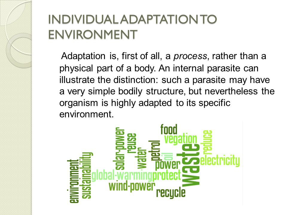 INDIVIDUAL ADAPTATION TO ENVIRONMENT Adaptation is, first of all, a process, rather than a physical part of a body.