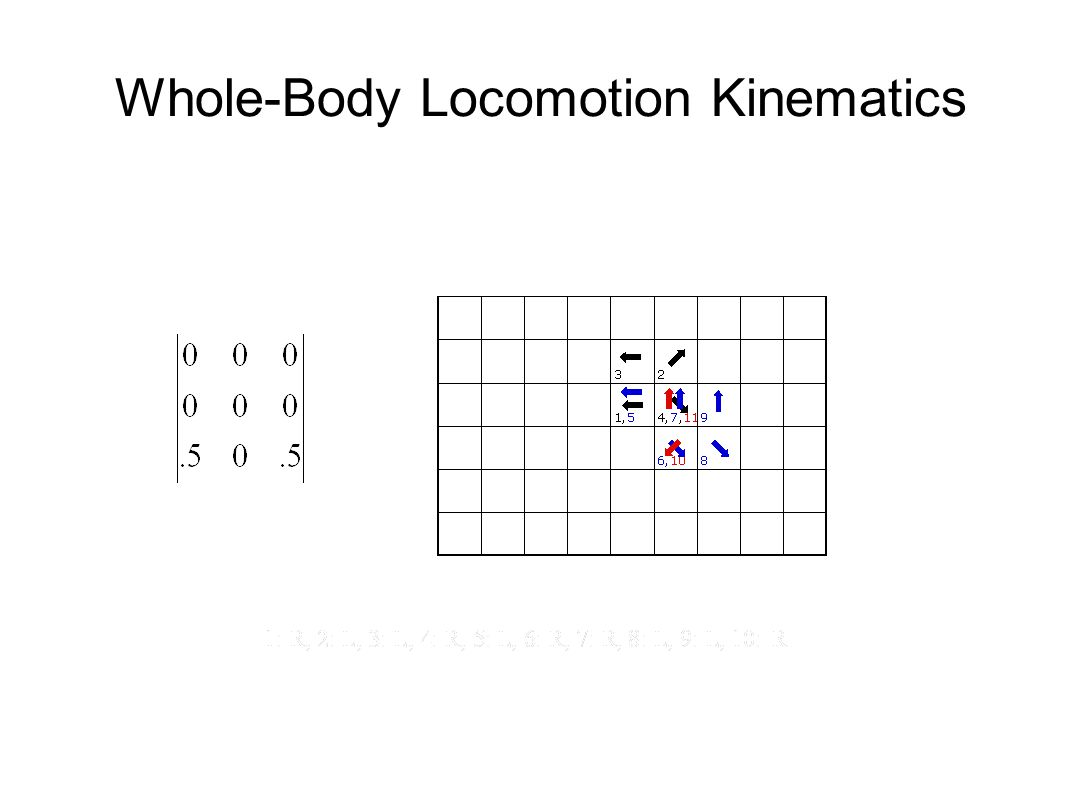 Whole-Body Locomotion Kinematics