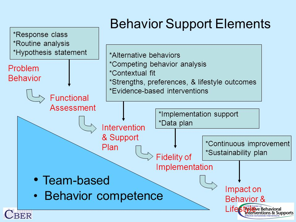 Behavior Support Elements Problem Behavior Functional Assessment Intervention & Support Plan Fidelity of Implementation Impact on Behavior & Lifestyle *Response class *Routine analysis *Hypothesis statement *Alternative behaviors *Competing behavior analysis *Contextual fit *Strengths, preferences, & lifestyle outcomes *Evidence-based interventions *Implementation support *Data plan *Continuous improvement *Sustainability plan Team-based Behavior competence