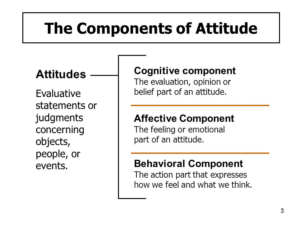 4 Linking Attitudes to the World of Jobs and Work Job satisfaction Job involvement - Psychological empowerment Organizational commitment - Affective commitment - Continuance commitment - Normative commitment Perceived organizational support (POS) Employee engagement
