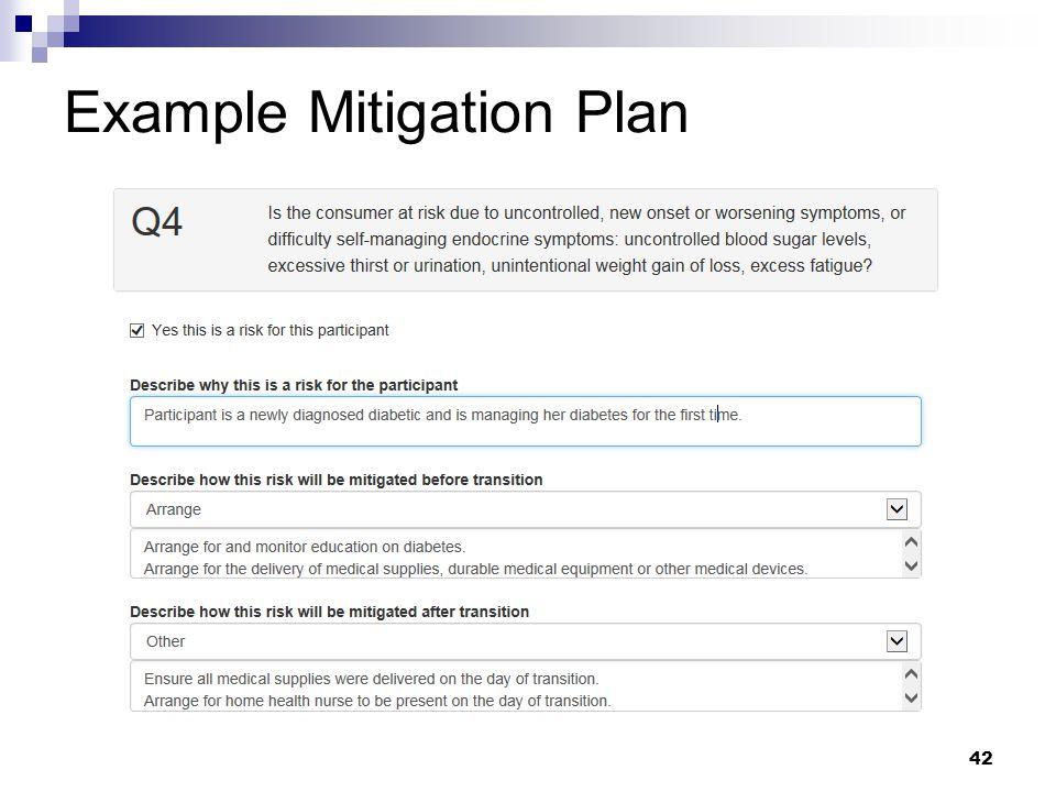 Example Mitigation Plan 42