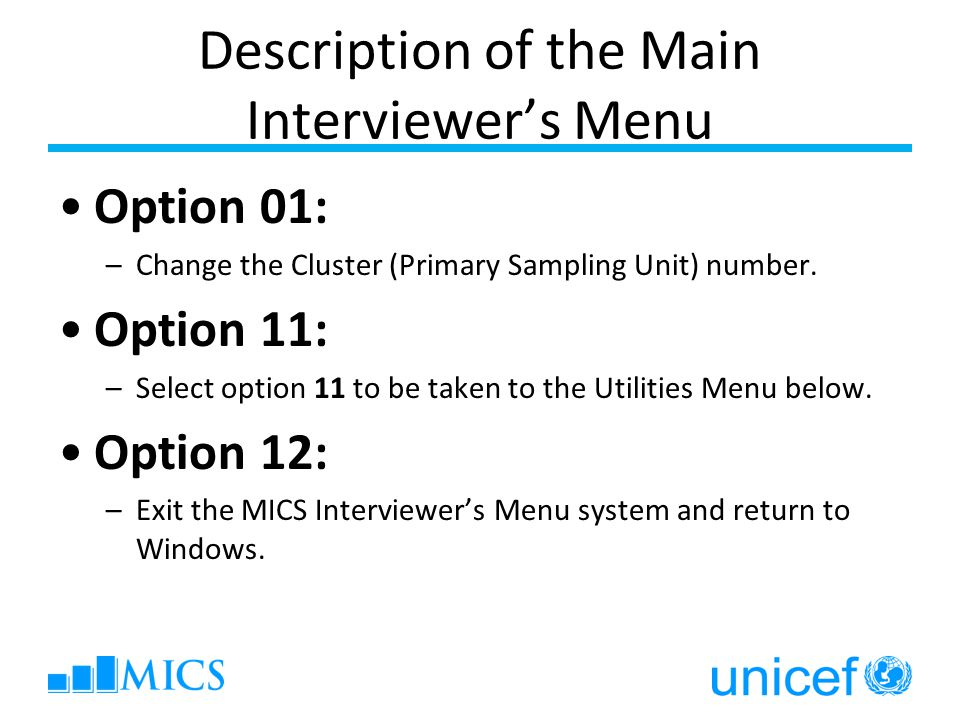 Description of the Main Interviewer's Menu Option 01: –Change the Cluster (Primary Sampling Unit) number.