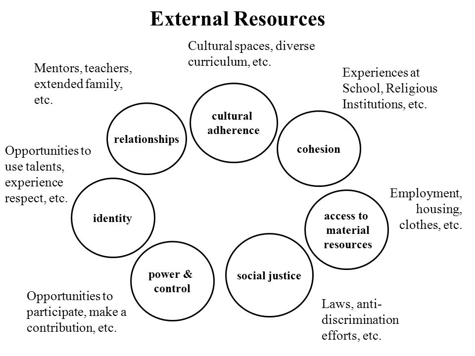 cultural adherence relationships identity power & control social justice access to material resources External Resources cohesion Experiences at Schoo