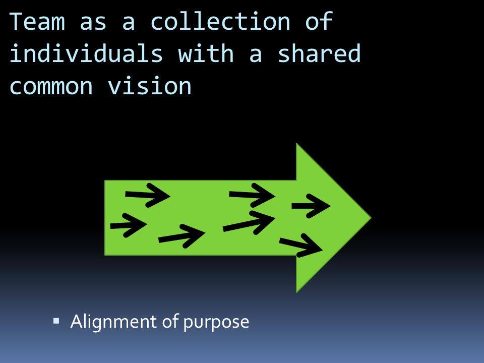Team as a collection of individuals with a shared common vision  Alignment of purpose