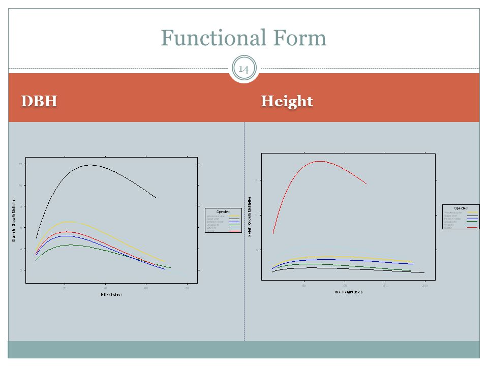 DBH Height Functional Form 14