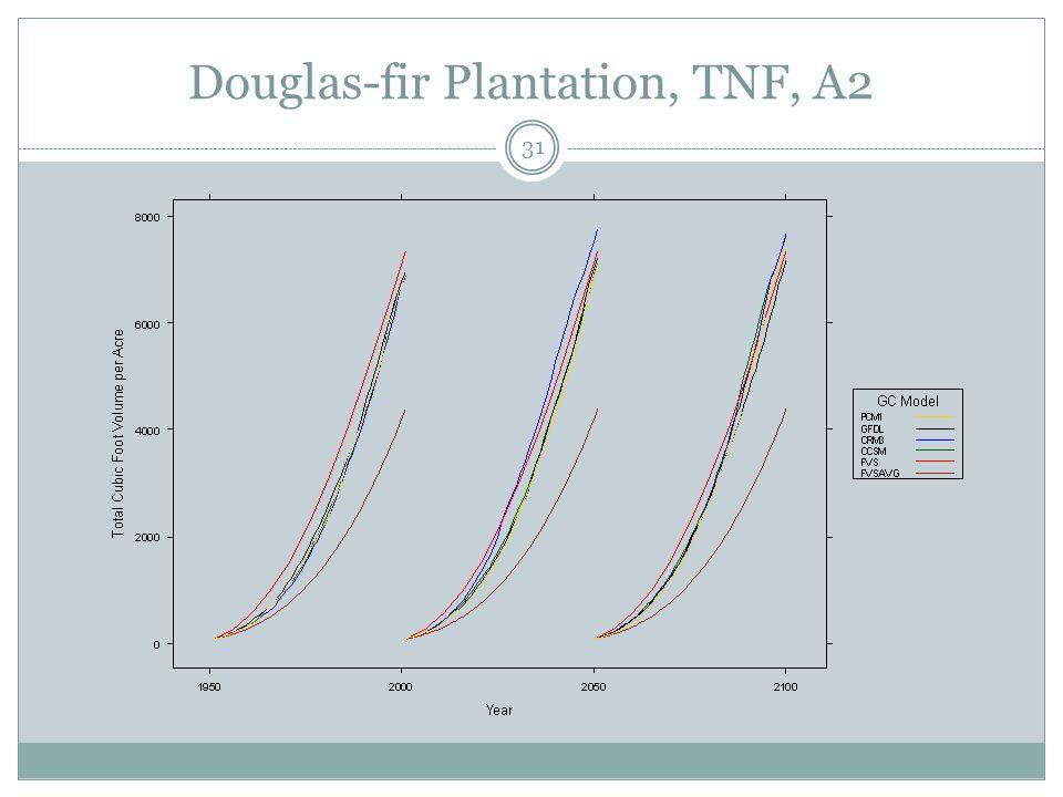 Douglas-fir Plantation, TNF, A2 31