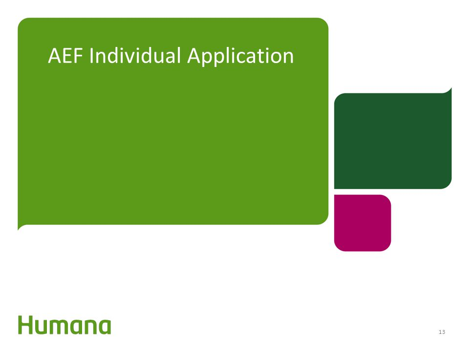 AEF Individual Application 13