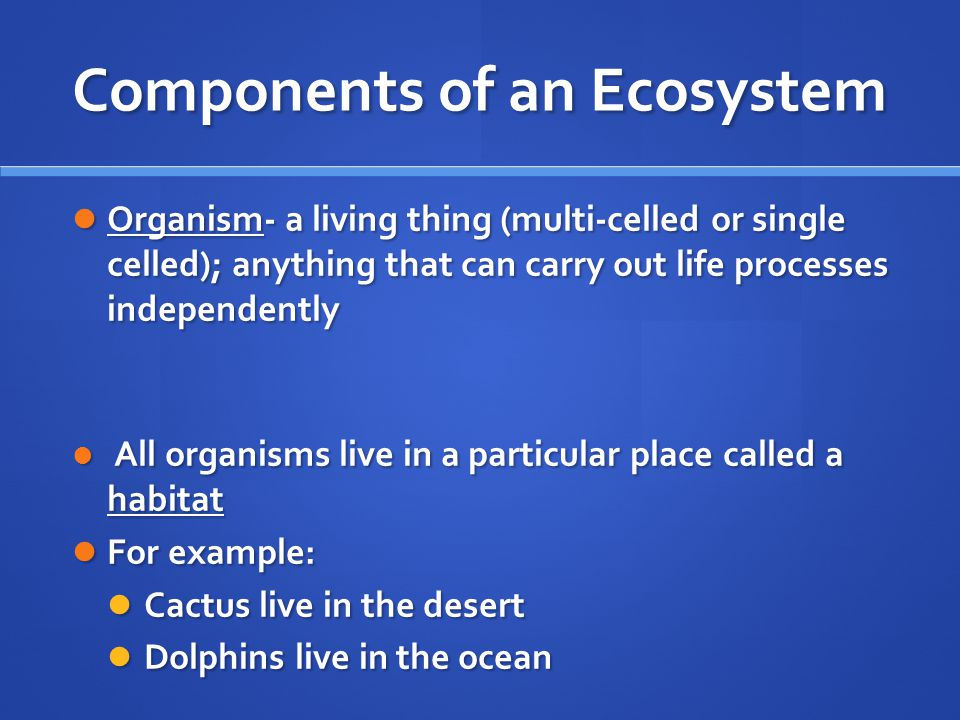 Components Species- organisms that are closely related and are capable of producing fertile offspring Species- organisms that are closely related and are capable of producing fertile offspring Population- members of the same species living in the same area at the same time Population- members of the same species living in the same area at the same time Community- two or more populations living in the same area at the same time Community- two or more populations living in the same area at the same time