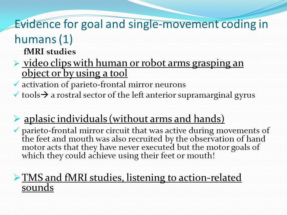 Evidence for goal and single-movement coding in humans (1) fMRI studies  video clips with human or robot arms grasping an object or by using a tool activation of parieto-frontal mirror neurons tools  a rostral sector of the left anterior supramarginal gyrus  aplasic individuals (without arms and hands) parieto-frontal mirror circuit that was active during movements of the feet and mouth was also recruited by the observation of hand motor acts that they have never executed but the motor goals of which they could achieve using their feet or mouth.