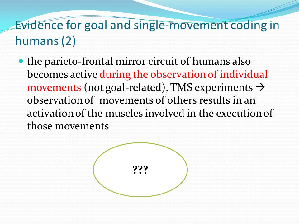 Evidence for goal and single-movement coding in humans (2) the parieto-frontal mirror circuit of humans also becomes active during the observation of individual movements (not goal-related), TMS experiments  observation of movements of others results in an activation of the muscles involved in the execution of those movements ???