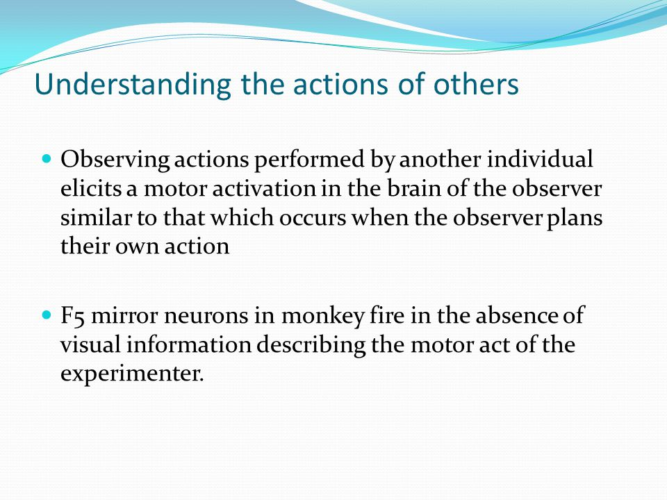 Understanding the actions of others Observing actions performed by another individual elicits a motor activation in the brain of the observer similar