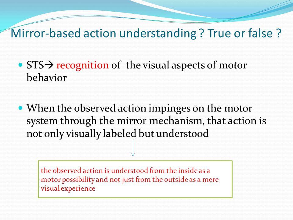 Mirror-based action understanding .True or false .