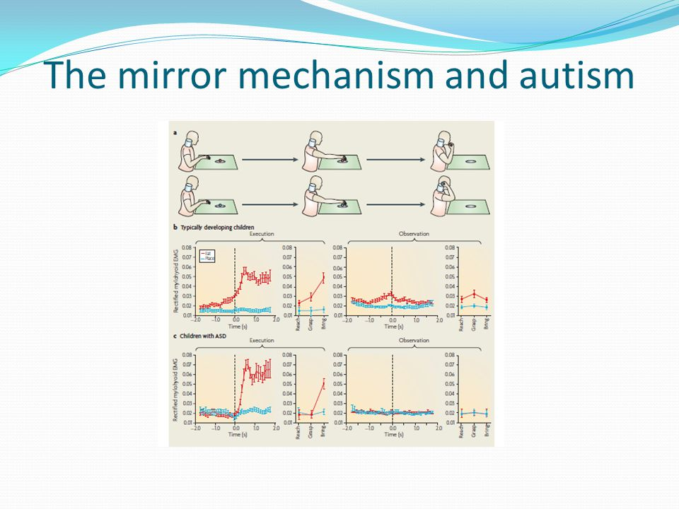 The mirror mechanism and autism