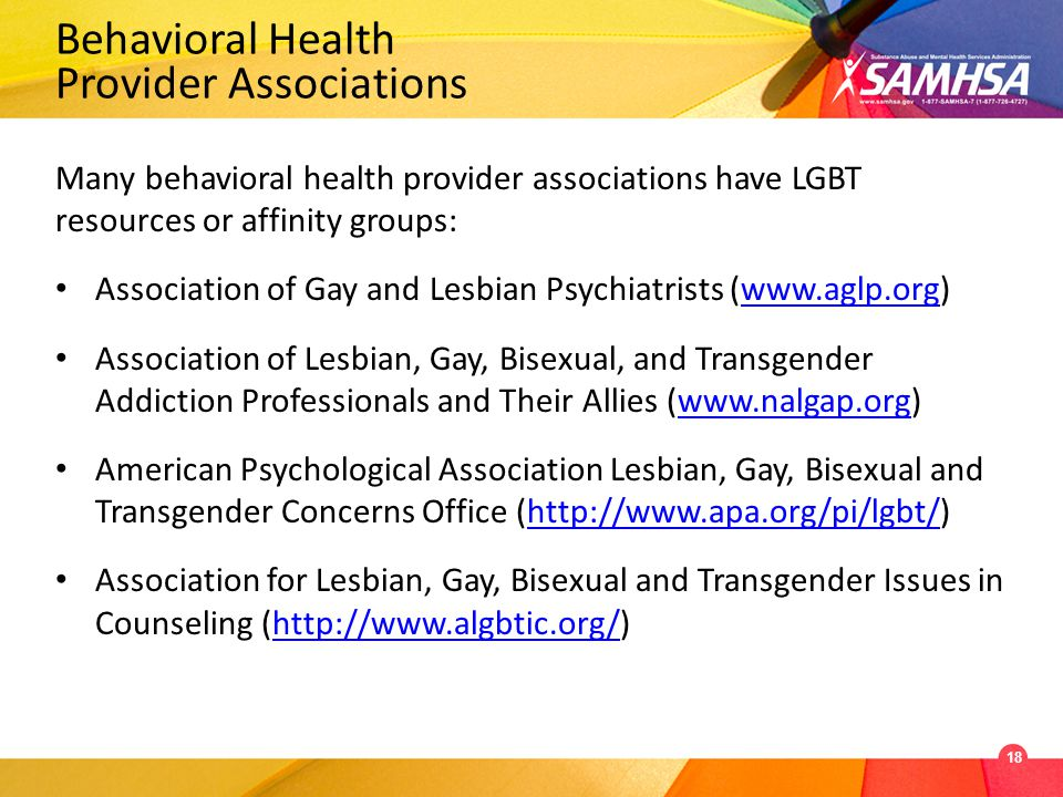 Behavioral Health Provider Associations Many behavioral health provider associations have LGBT resources or affinity groups: Association of Gay and Lesbian Psychiatrists (www.aglp.org)www.aglp.org Association of Lesbian, Gay, Bisexual, and Transgender Addiction Professionals and Their Allies (www.nalgap.org)www.nalgap.org American Psychological Association Lesbian, Gay, Bisexual and Transgender Concerns Office (http://www.apa.org/pi/lgbt/)http://www.apa.org/pi/lgbt/ Association for Lesbian, Gay, Bisexual and Transgender Issues in Counseling (http://www.algbtic.org/)http://www.algbtic.org/ 18