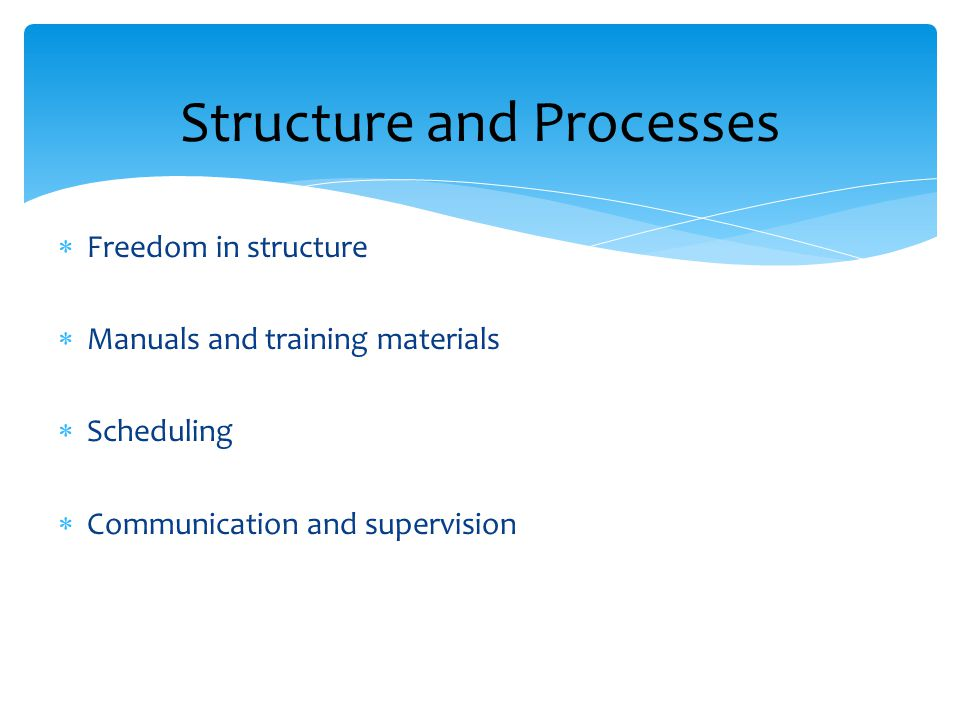 Structure and Processes  Freedom in structure  Manuals and training materials  Scheduling  Communication and supervision