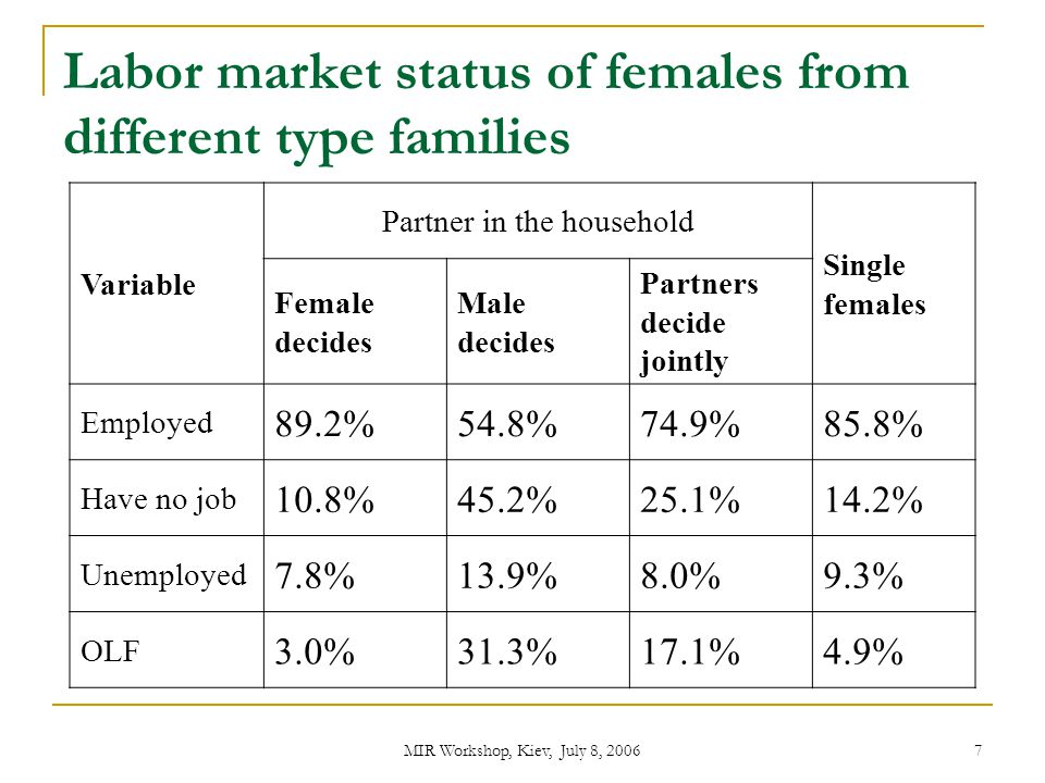 MIR Workshop, Kiev, July 8, 2006 8 Female Labor Supply Main Hypotheses: For women from female-dominated partnerships partner's wage has no influence on their LS decision Wage of partner matters for women from male- dominated partnerships Wage of partner matters for women from egalitarian type of families