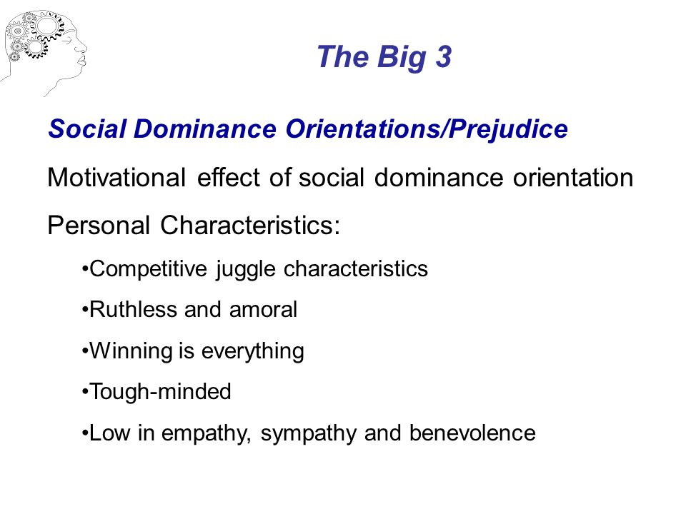 The Big 3 Social Dominance Orientations/Prejudice Motivational effect of social dominance orientation Personal Characteristics: Competitive juggle characteristics Ruthless and amoral Winning is everything Tough-minded Low in empathy, sympathy and benevolence