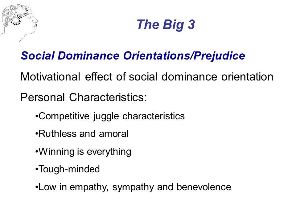 The Big 3 Social Dominance Orientations/Prejudice Motivational effect of social dominance orientation Personal Characteristics: Competitive juggle cha