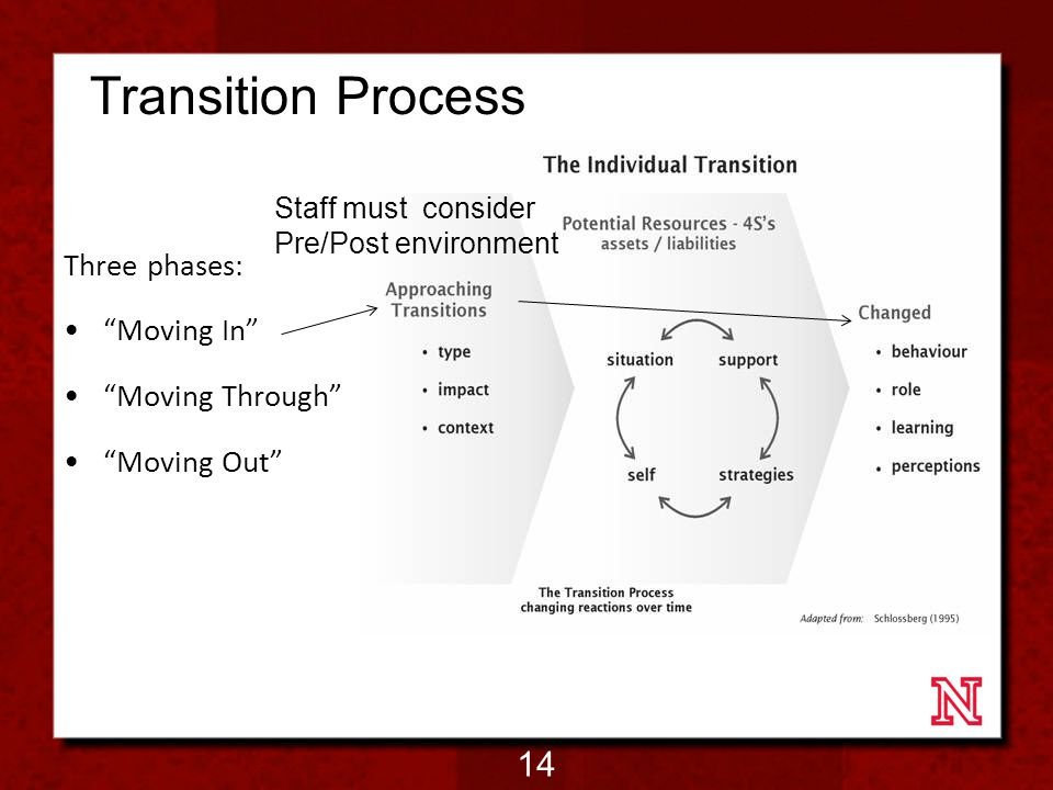 Transition Process Three phases: Moving In Moving Through Moving Out Staff must consider Pre/Post environment 14