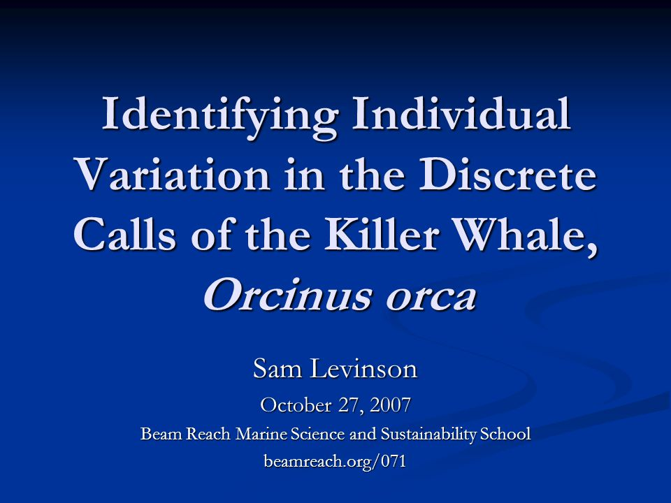 Identifying Individual Variation in the Discrete Calls of the Killer Whale, Orcinus orca Sam Levinson October 27, 2007 Beam Reach Marine Science and Sustainability School beamreach.org/071