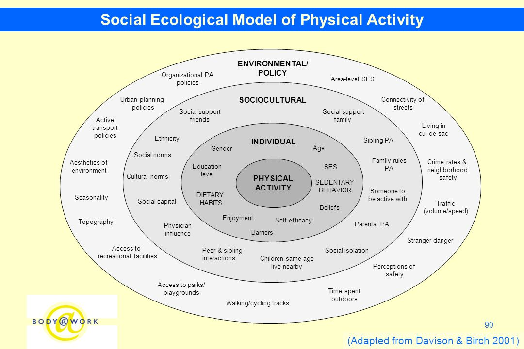 90 Social Ecological Model of Physical Activity (Adapted from Davison & Birch 2001) PHYSICAL ACTIVITY INDIVIDUAL Gender Age Enjoyment SOCIOCULTURAL DIETARY HABITS SEDENTARY BEHAVIOR Beliefs Social capital Physician influence Urban planning policies Social support friends Social norms Time spent outdoors Sibling PA Social isolation Social support family Ethnicity ENVIRONMENTAL/ POLICY Seasonality Area-level SES Crime rates & neighborhood safety Walking/cycling tracks Aesthetics of environment Active transport policies Access to recreational facilities Traffic (volume/speed) Someone to be active with Self-efficacy Education level SES Barriers Parental PA Peer & sibling interactions Children same age live nearby Family rules PA Cultural norms Perceptions of safety Access to parks/ playgrounds Connectivity of streets Living in cul-de-sac Stranger danger Topography Organizational PA policies