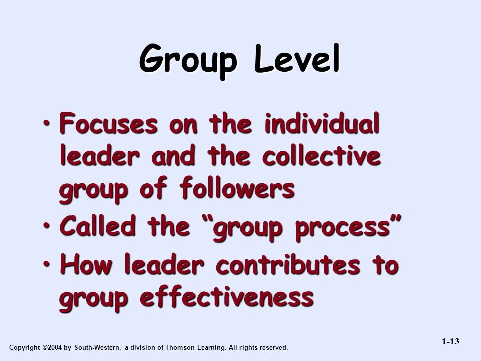 Copyright ©2004 by South-Western, a division of Thomson Learning. All rights reserved. Group Level Focuses on the individual leader and the collective