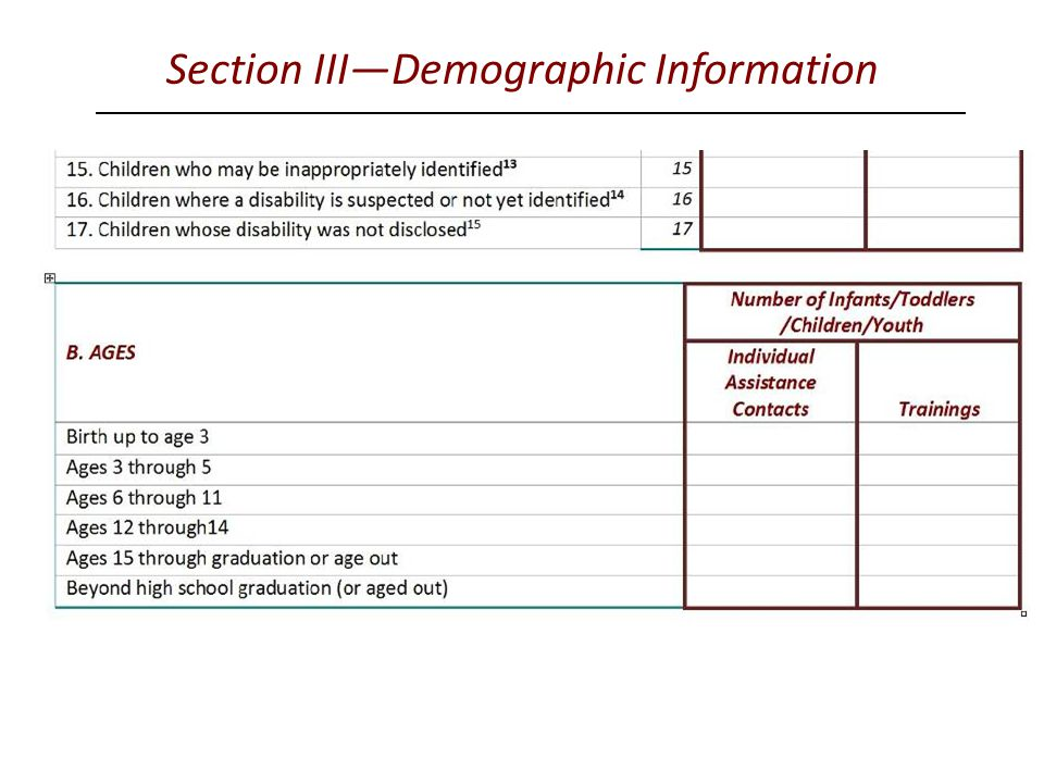 Section III—Demographic Information