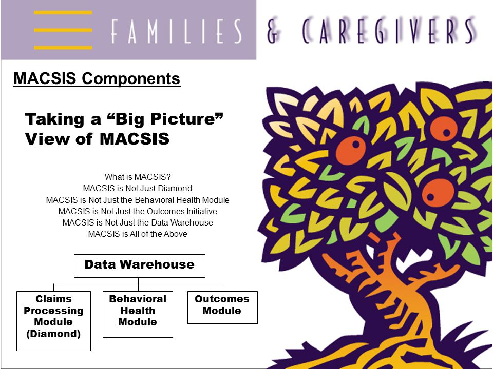 """MACSIS Components Taking a """"Big Picture"""" View of MACSIS What is MACSIS? MACSIS is Not Just Diamond MACSIS is Not Just the Behavioral Health Module MAC"""