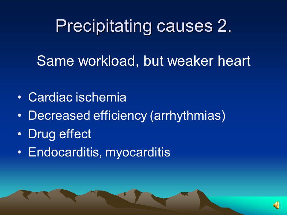 Precipitating causes 2.