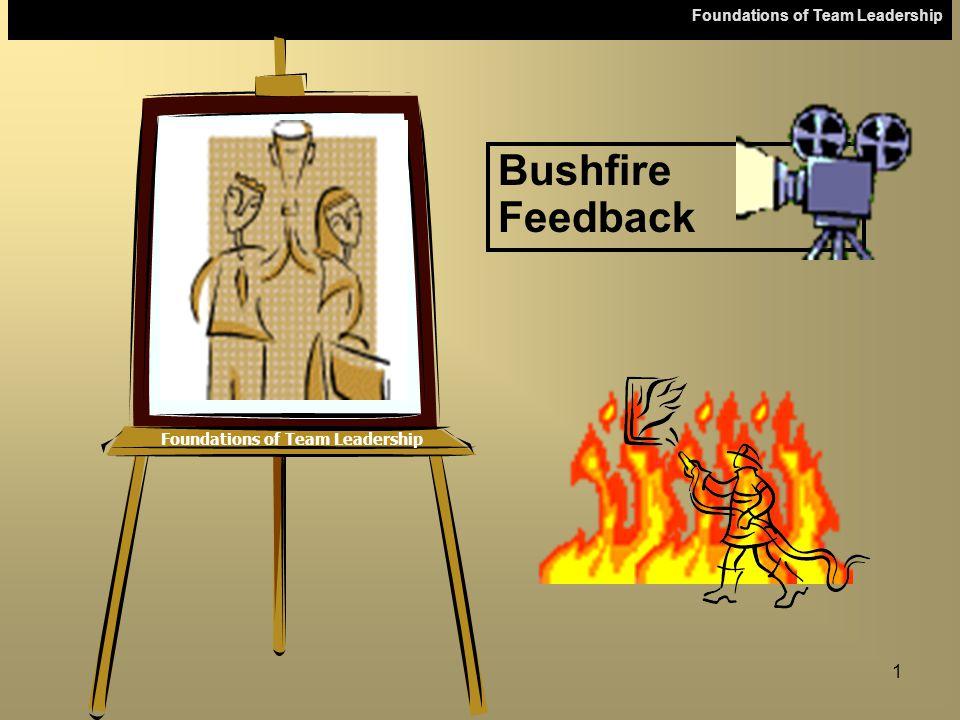 Foundations of Team Leadership 1 Bushfire Feedback