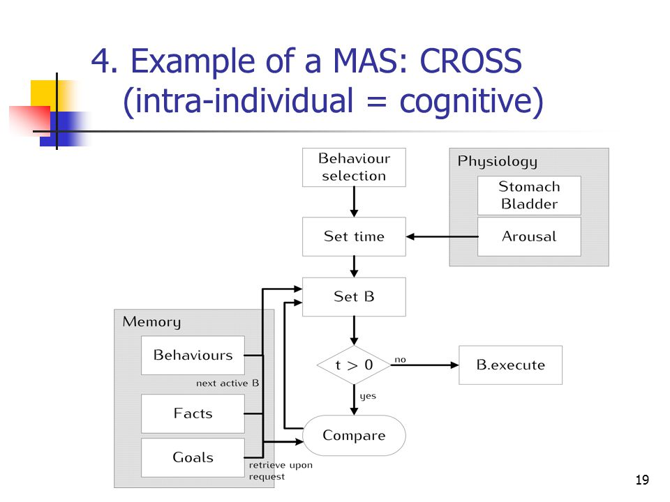 4. Example of a MAS: CROSS (intra-individual = cognitive) 19