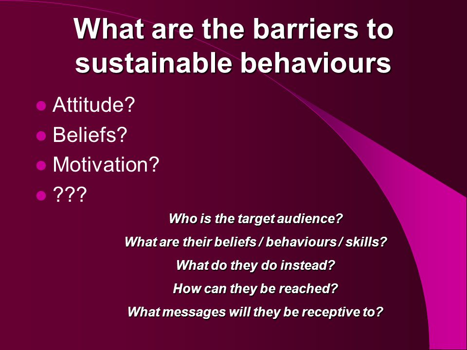 Barriers Value Action Gap – It is important to protect the environment but other factors take precedence when I actually choose my behaviours Lack of Agency – The problem is too big for me to make a difference