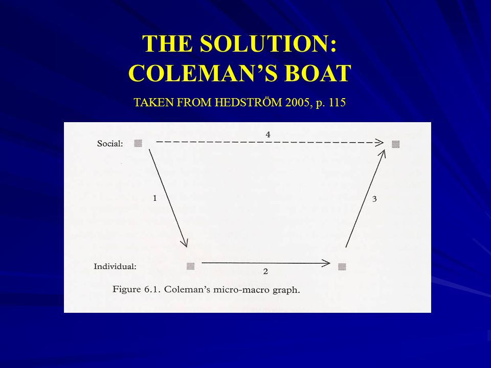 THE SOLUTION: COLEMAN'S BOAT TAKEN FROM HEDSTRÖM 2005, p. 115