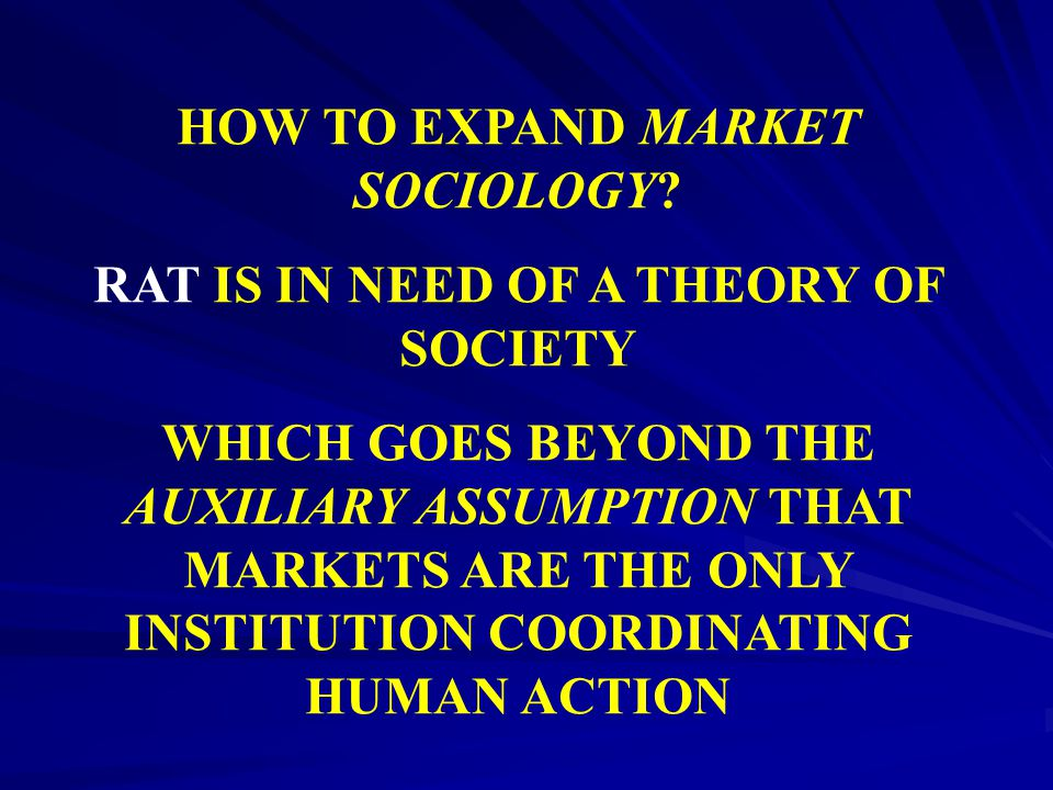 HOW TO EXPAND MARKET SOCIOLOGY? RAT IS IN NEED OF A THEORY OF SOCIETY WHICH GOES BEYOND THE AUXILIARY ASSUMPTION THAT MARKETS ARE THE ONLY INSTITUTION