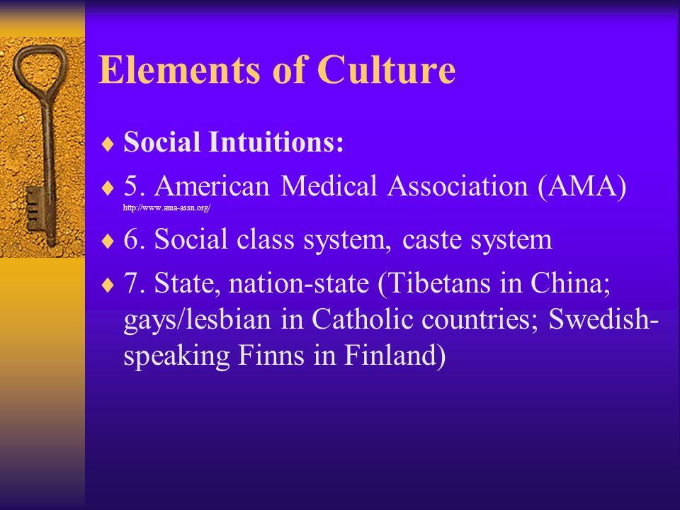 Elements of Culture  Social Intuitions:  5.